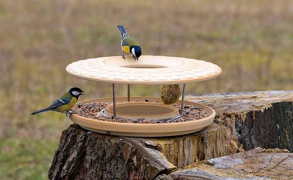 Vogelspeisehaus